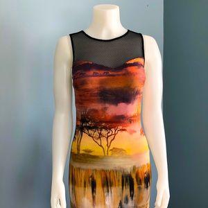 Frank Lyman Chic & Stylish Sleeveless Maxi Dress